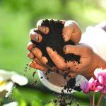 Natur-jord-Bokashi-kompost